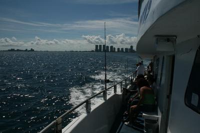 マイアミ乗合船