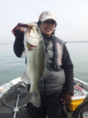 国井氏55cm
