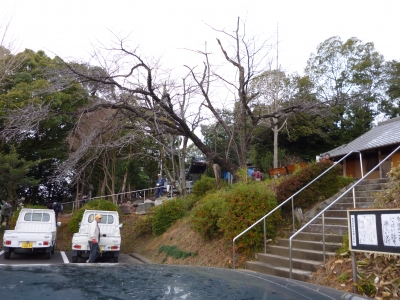 山神社年末大掃除