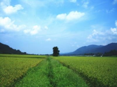秋田県湯沢市稲庭町の田園風景