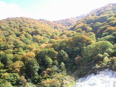 秋田県湯沢市の風景 泥湯の紅葉3
