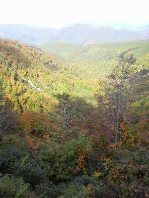 秋田県湯沢市の風景 紅葉3