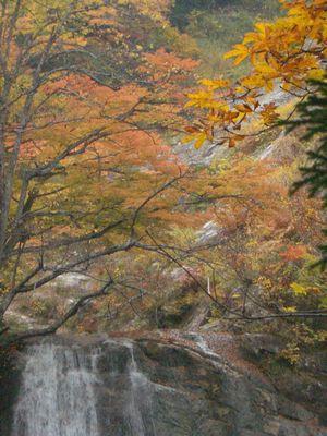 秋ノ宮湯の又温泉 紅葉
