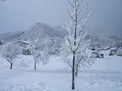 稲庭うどんの郷 雪景色