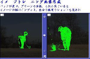 バックが黒に鮮やかなグリーンイメージトレーニング用の画像