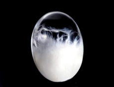石綿in水晶