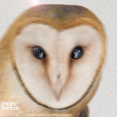 marutanton2016.jpg