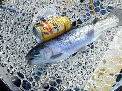 管理釣り場 朝霞ガーデン 大き目のトラウト