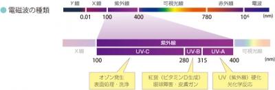 紫外線 波長.jpg