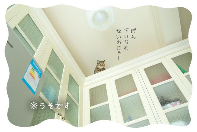 0118_04.jpg