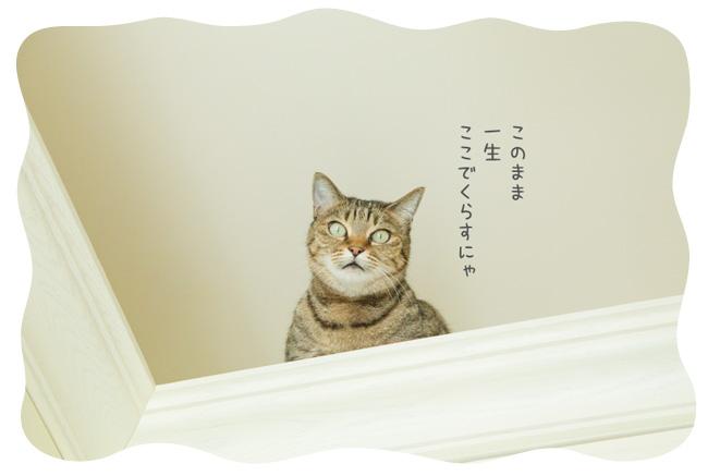 0118_05.jpg