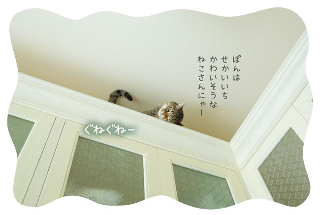 0118_08.jpg
