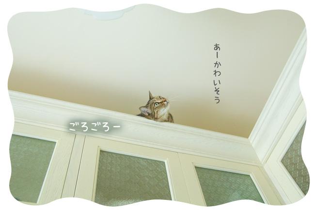 0118_09.jpg
