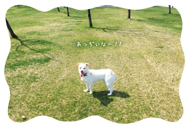 0305_23.jpg