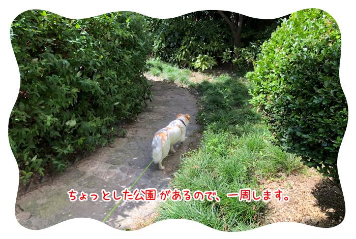 0717_16.jpg
