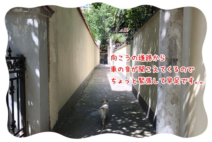 0717_09.jpg