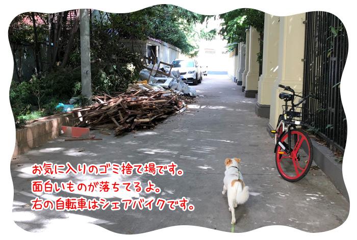 0717_07.jpg