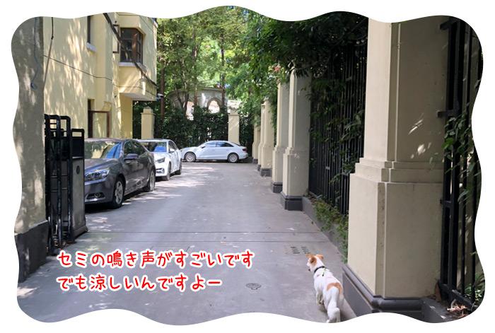 0717_06.jpg