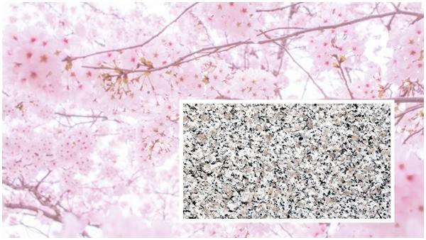 岩手県産姫神小桜石