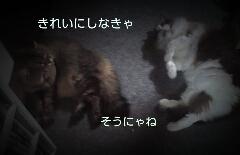 PE_20130927192506.jpg