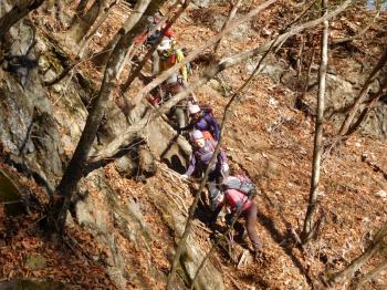 八丁トンネル登山口駐車場から八丁峠までの登山道は落ち葉でいっぱいでした