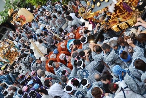 2012三社祭_011.JPG