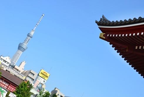 2012三社祭_019.JPG