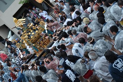 2012三社祭_1000.JPG