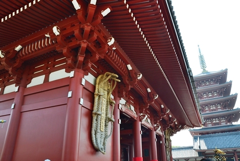 2012三社祭_041.JPG