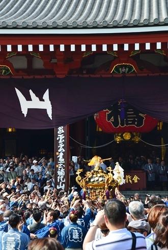 2012三社祭_085.JPG
