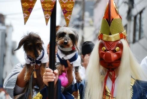2012三社祭_075.JPG