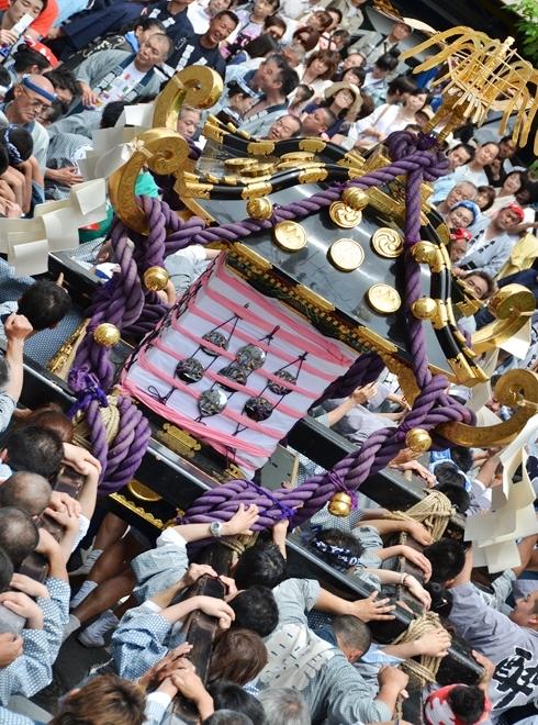 2012三社祭_2000.JPG