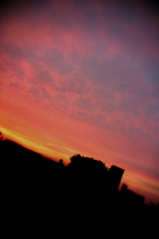 lento_20110926181958.jpg