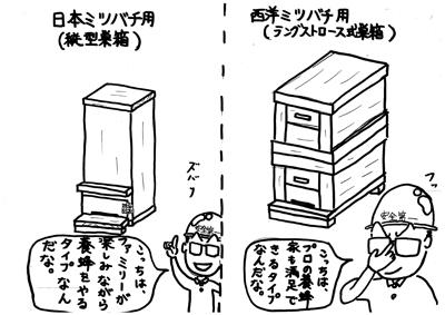 養蜂箱の種類