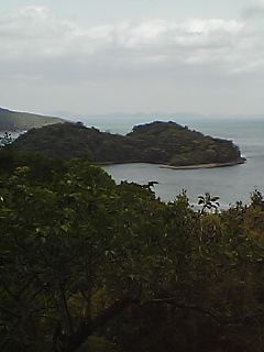 生島天然記念物
