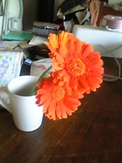 レストランでもらった花