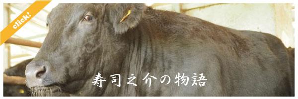 bui-blog-susinosuke-01.jpg