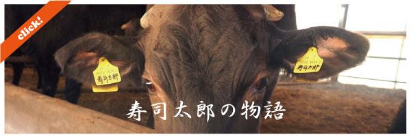 bui-blog-susitarou-01.jpg