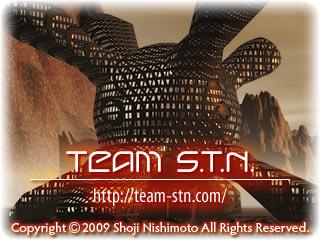 Team S.T.N.