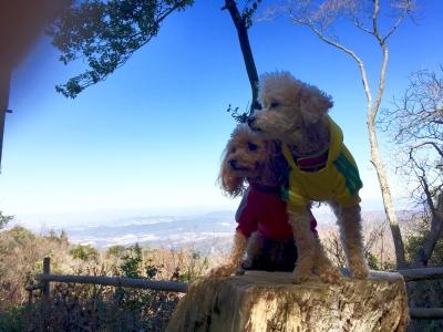 猿投山に行ってきました