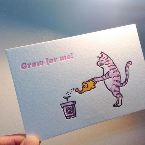 活版印刷 猫