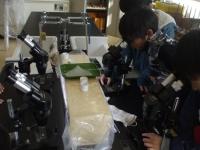 水溶液の再結晶