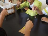 水溶液の性質の実験