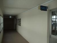 理科室廊下の掲示