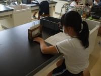 酸・塩基と金属の反応