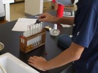 BTB液で 「ぼっち実験」
