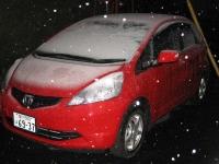 とうとう雪が降ってきた