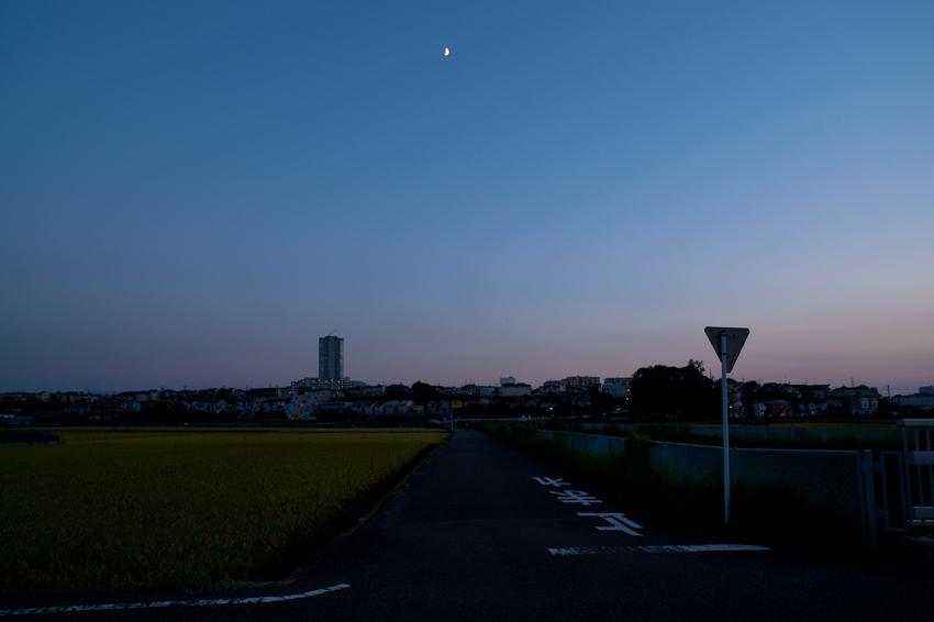 DSC_9790-2B.jpg