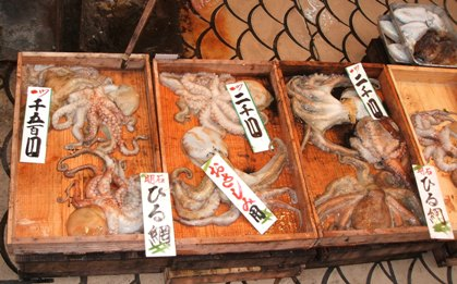 明石魚の棚活けタコ
