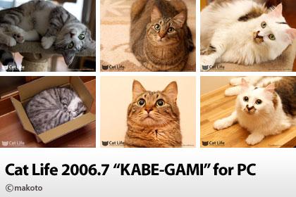 Cat Life 2006年7月の猫写真壁紙